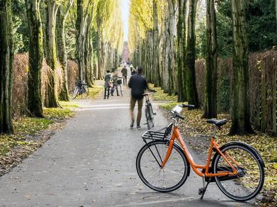 Cycling in Nørrebro
