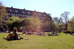 People chilling in a park in Copenhagen