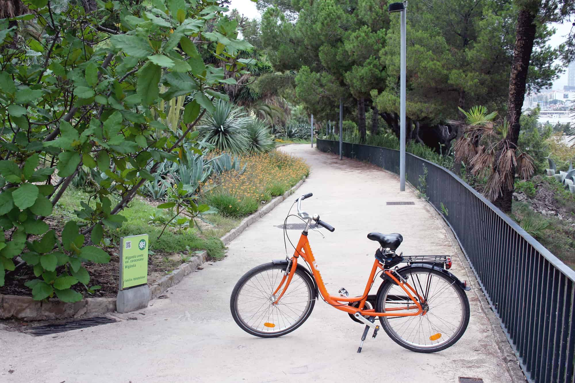 Bike tour in Barcelona, at Jardins de Joan Brossa