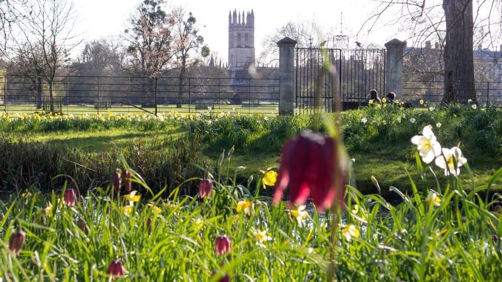 Magdalen College. Photo credit: Ed Webster (CC0)