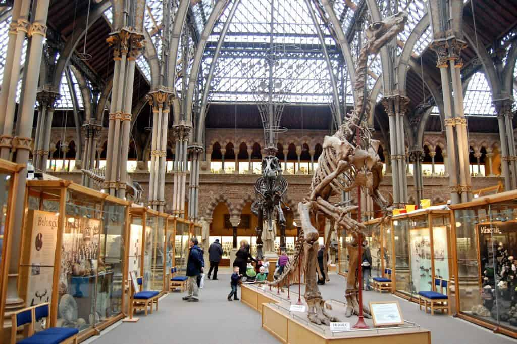 Oxford University Museum of Natural History. Photo credit: Magnus D (CC0)
