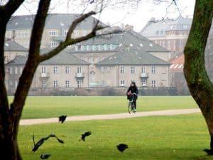 Bike rental Østerbro
