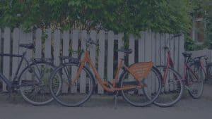Host Donkey Bikes