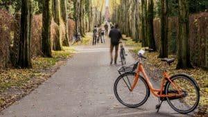 Bike in Copenhagen park
