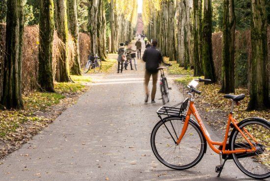 Top 5 sustainable spots in Copenhagen