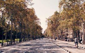 Bike lane Boulevard